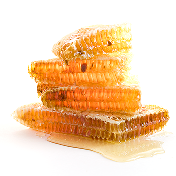 food lovers honey comb